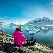 Sitting watching - Falkland Islands - South Georgia - Antarctic Peninsula